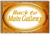 Back to Main Gallery!